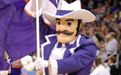 Ace Purple Mascot Costumes (University of Evansville)