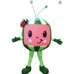 Cocomelon Watermelon Mascot Costume