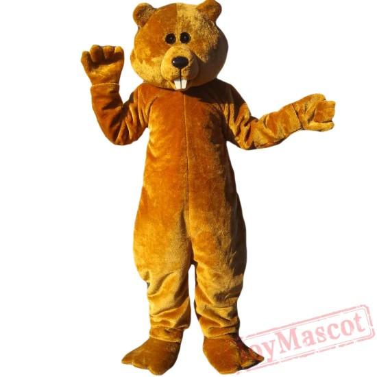 Animal Brown Bear Mascot Costume for Adult & Kids