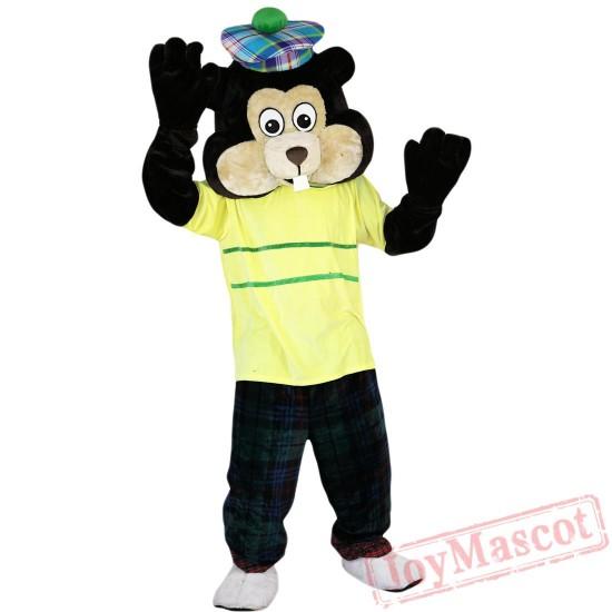 Animal Bear Mascot Costume for Adult & Kids