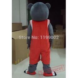 Bear Mascot Costumes Grey Bear