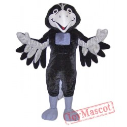 Black Hawk Mascot Costume