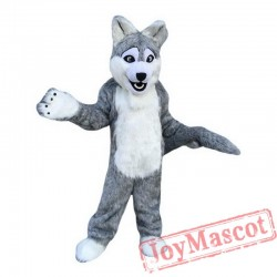 Long Gray Wolf Mascot Costume