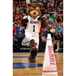 Belmont Bruins Bear Mascot Costume