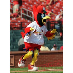 St. Louis Cardinals Mascot Costume