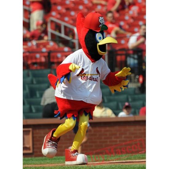 St. Louis Cardinals Mascot Costume