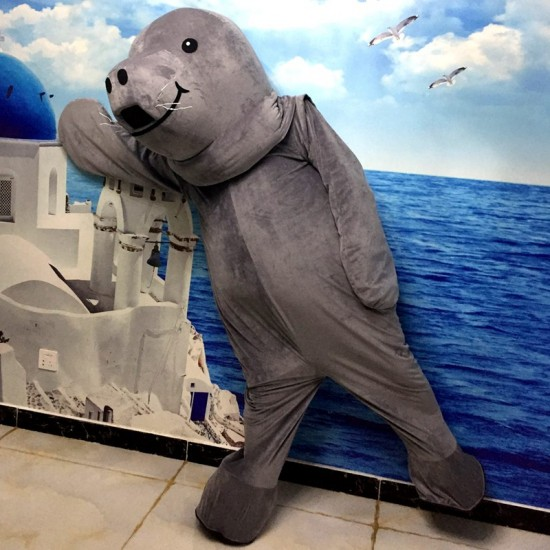 Sea Lions Walrus Mascot Costume