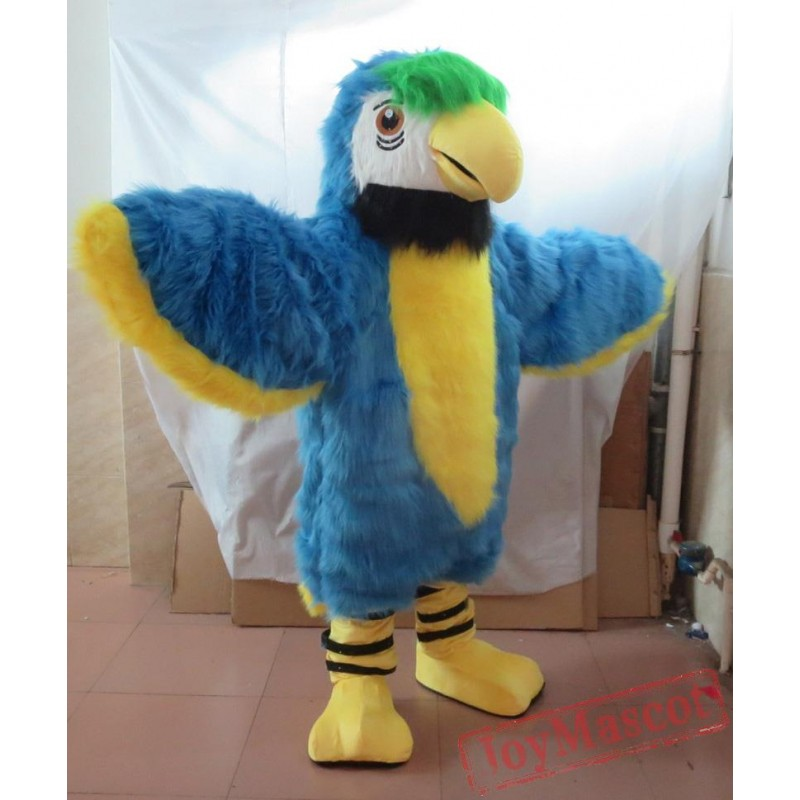 Adult big bird costume excellent