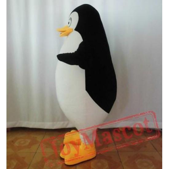 Adult Penguin Mascot Costume Fat Penguin Costume