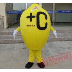 Adult Lemon Mascot Costume
