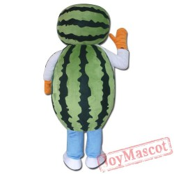 Watermelon Mascot Costume Adult Watermelon Costume