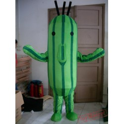 Cacti Mascot Costume For Adult