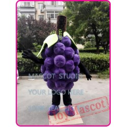 Grape Mascot Costume Fruit