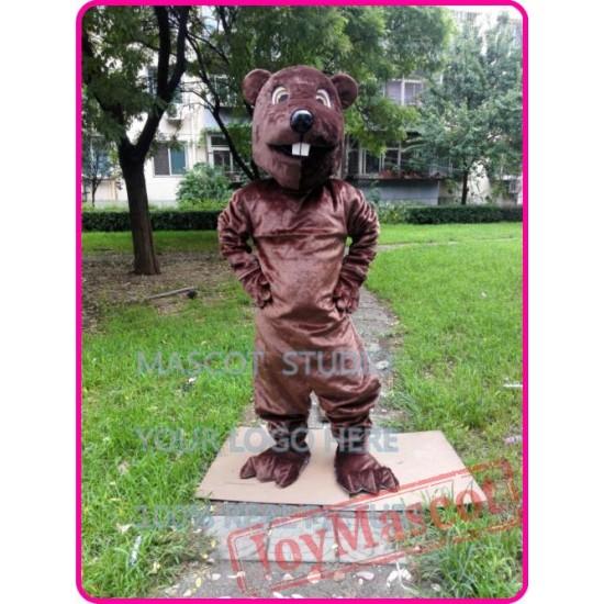Mascot Beaver Sinocastor Castor Mascot Costume