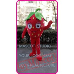 Mascot Strawberry Mascot Fruit Mascot Costume