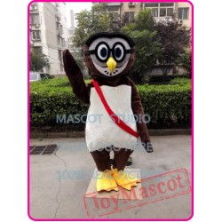 Cartoon Owl Mascot Costume