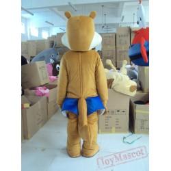 Brown Fox Cartoon Character Costume