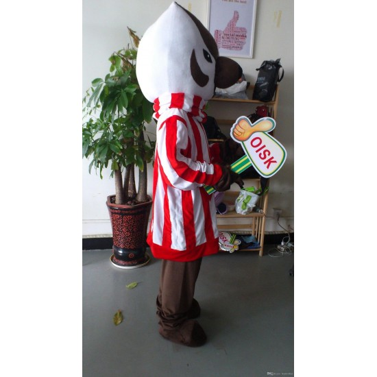 Bucky Badger Mascot Costume