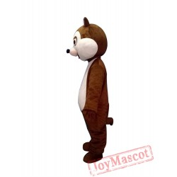 Chip And Dale Chipmunk Squirrel Mascot Costume