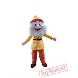 Dwarfs Of Snow White Mascot Costume