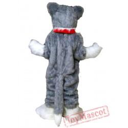 Grey Wolf Mascot Costume