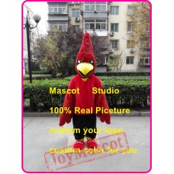 Red Jay Mascot Costume Red Cardinal
